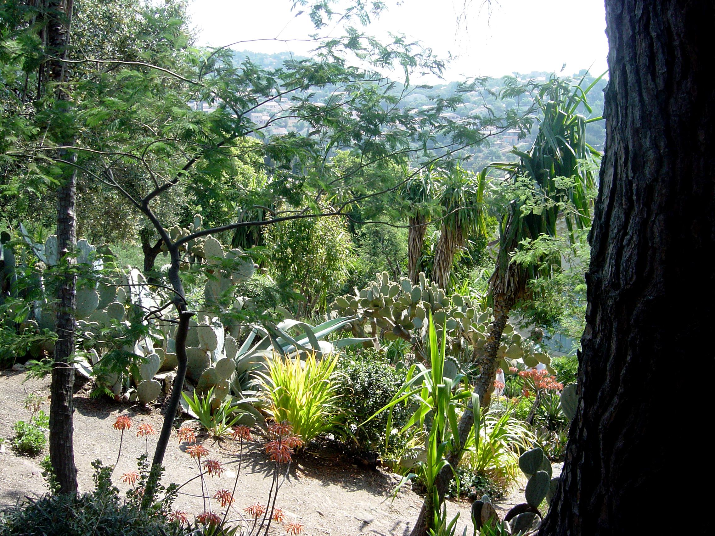 Huishuren Cotedazur Bormes,  achtertuin Villa le Cactus